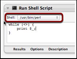 ConfigureRunShellScriptAction